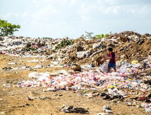Ambiente e rifiuti: tutte le norme e le informazioni necessarie