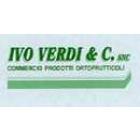 wp-content/uploads/img-loghi12/IvoVerdiSnc_logo.jpeg