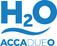 wp-content/uploads/img-loghi8/ACCADUEO_logo.png