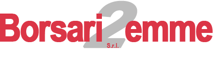 wp-content/uploads/img-loghi9/logo_borsari2emmesrl.png